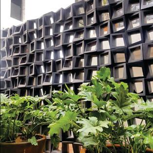 Quadra lattice, Puerto Vallarta