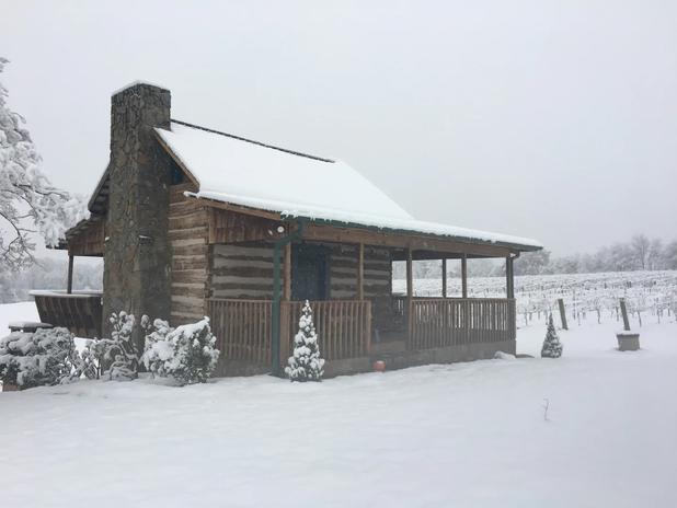 Cabin 7.webp