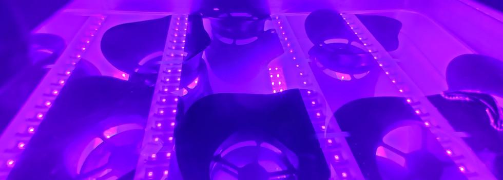 UV Curing Tank
