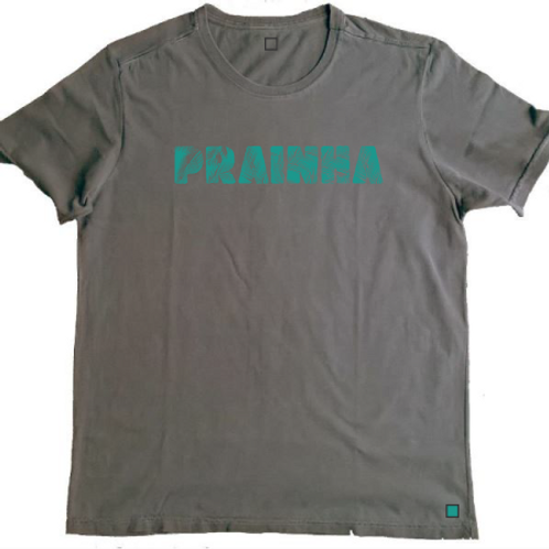 Camiseta Prainha Chumbo