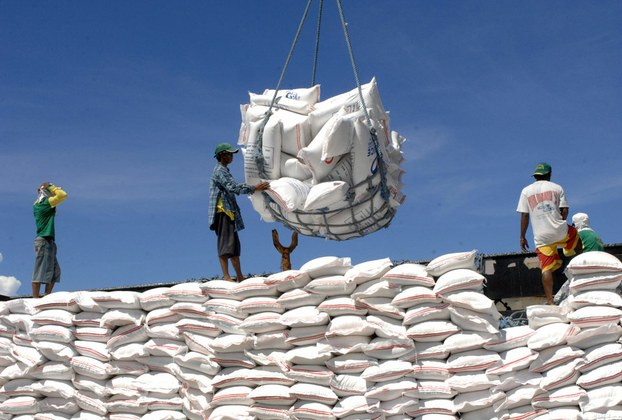 Ảnh minh họa xuất khẩu gạo của Việt Nam