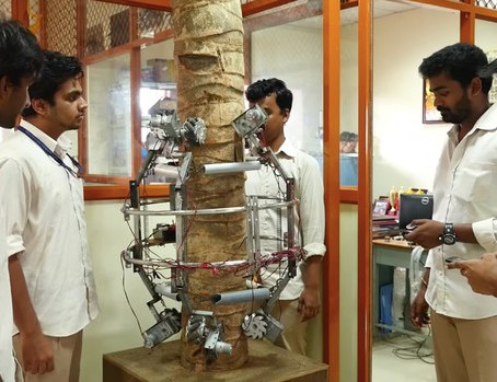 Robot cũng leo trèo hái dừa như thợ chuyên nghiệp