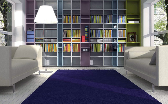 Bibliothèque ERBA