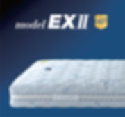 modelEX2.jpg