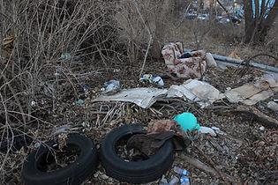 Lykins Dumping 3