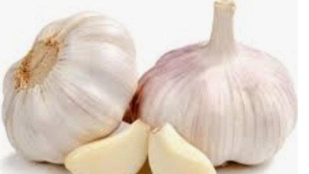 Garlic bulb x1