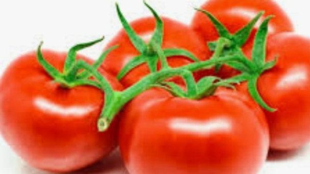 Vine tomato x5 LARGE