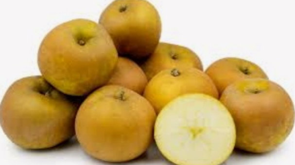 Russet apples x5