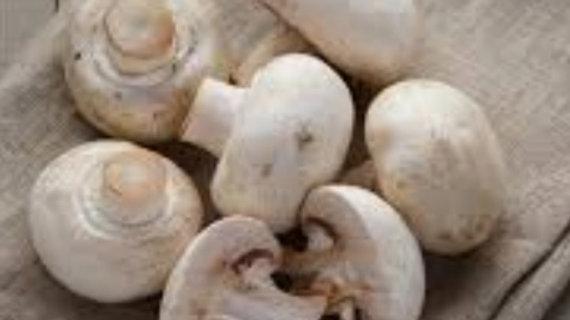 Mushrooms x1 brown bag