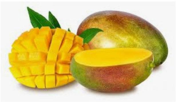 mango x1 large