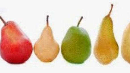 Loose pears x5