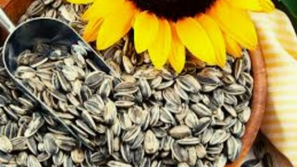 Sunflower seeds (Approximately)1kg