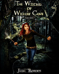 The Witches of Willow Cove series