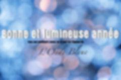 web voeux onde bleue.jpg