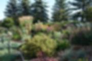 LoH2O Garden.JPG