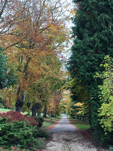 The Approach | Greyfriars House