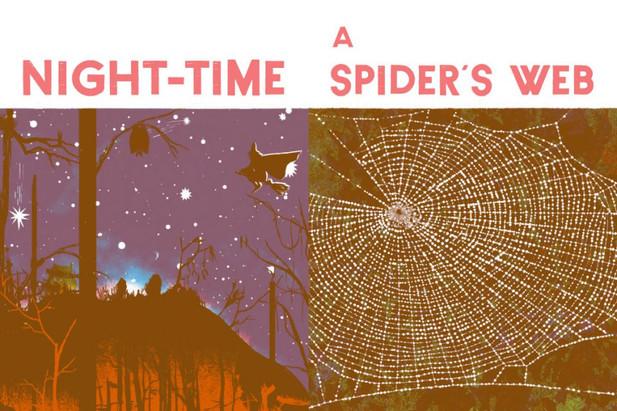 nighttime-spidersweb-960x640.jpg