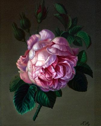 Rose, still-life, oil, canvas
