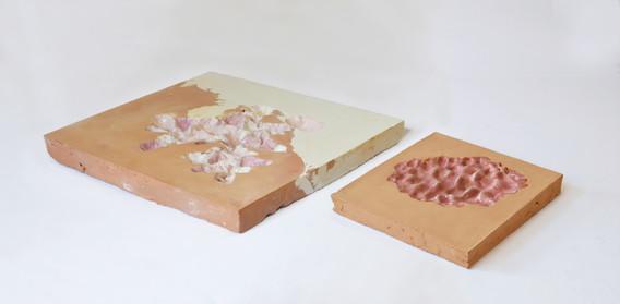 due piatti rosa.jpg