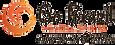 Go Brazil logo