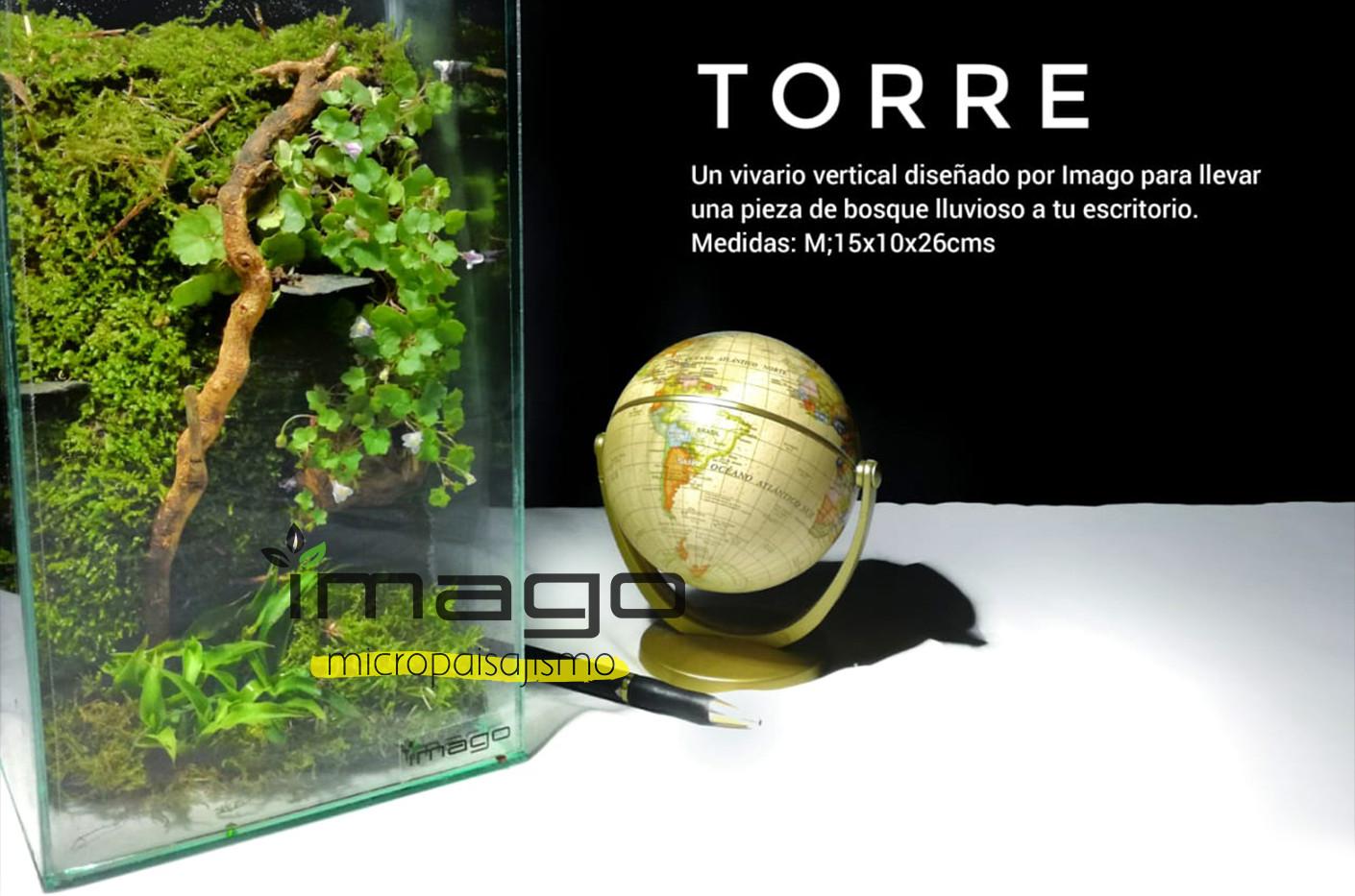 PortadaTorre.jpg