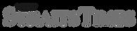 NST Logo_edited.png