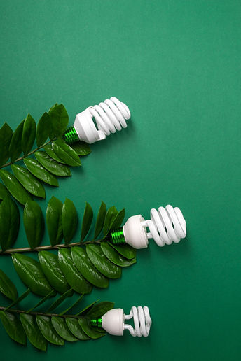 led-lamp-with-green-leaf-eco-energy-conc