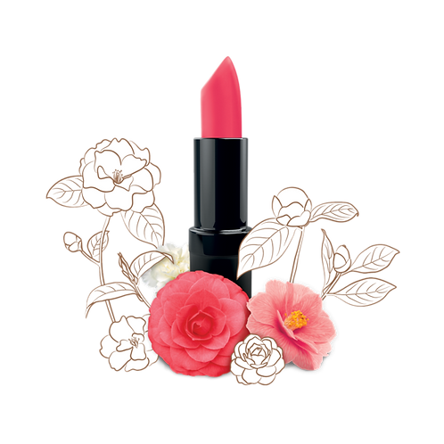13 Camellia Morning