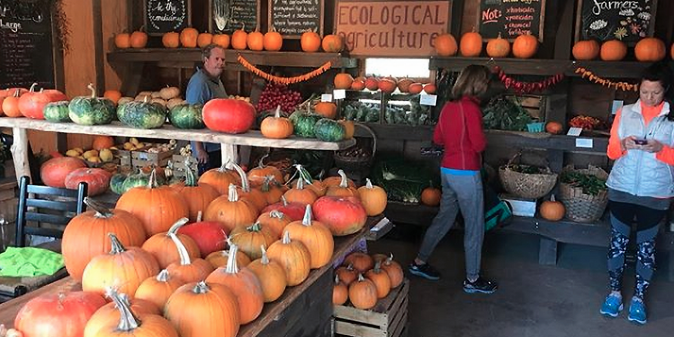 Fall Harvest Festival (RESCHEDULED TO NOV 3rd)