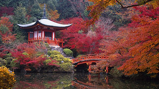 Automne-temple-CHine.jpg