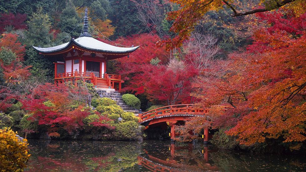 Automne-temple-CHine.jpg