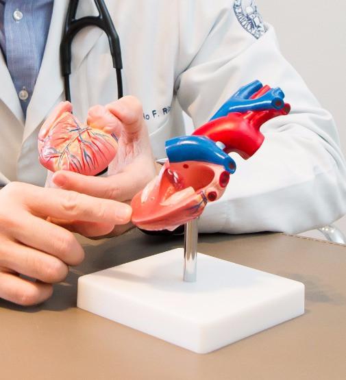 Informações a pacientes e familiares: insuficiência cardíaca.