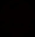 Super Basshole 2020 LOGO.png