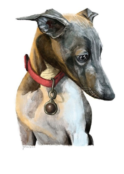 dog digital portrait watercolor pets maanvi kapur