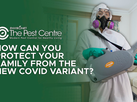 HOW CAN YOU PROTECT YOUR FAMILY FROM THE NEW COVID VARIANT?