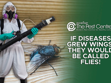 IF DISEASES GREW WINGS, THEY WOULD BE CALLED FLIES