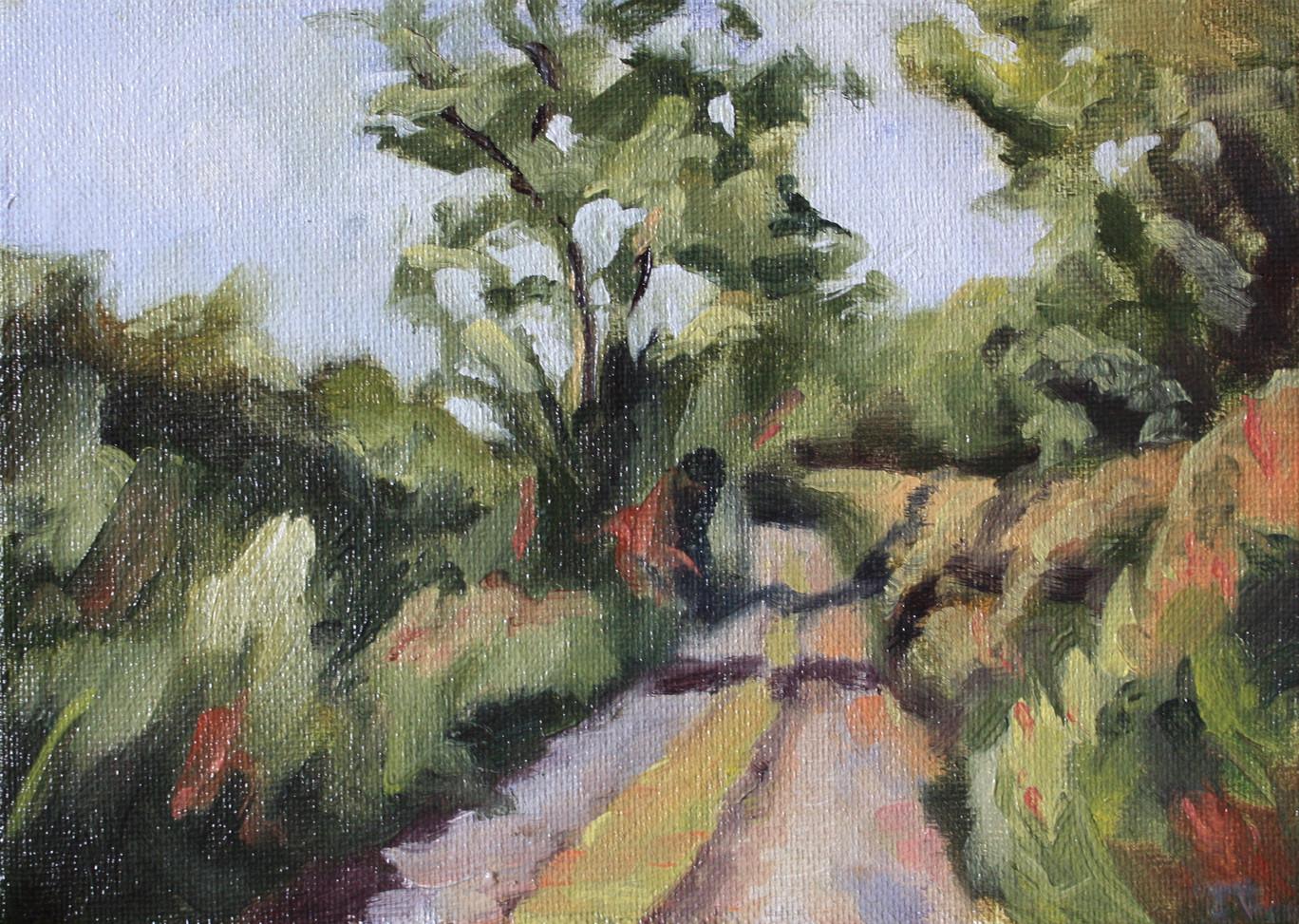 Narrow Road in Dingle