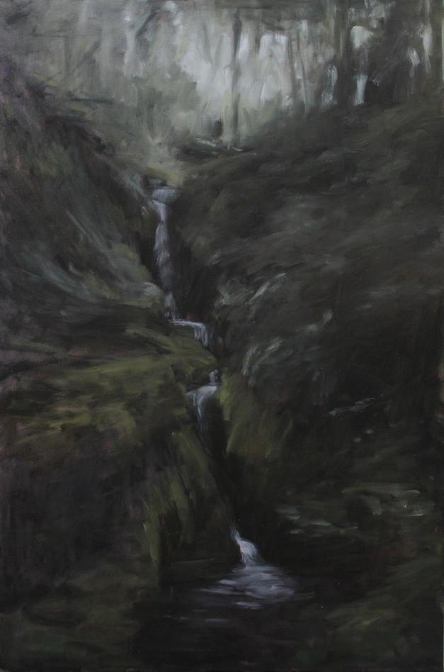 Poulanass Waterfall, Glendalough