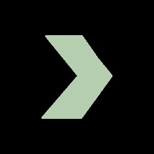 imagexpert_elements_1fleche_pleine_vert_
