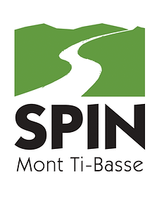 02-SPIN Sport - Logo-1.png