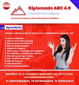 Flyer Diplomado CIDE.png