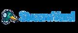 streamyard logo.png