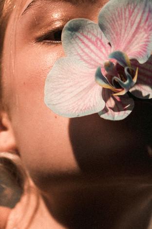 Orchid Beauty by Laurent Castellani
