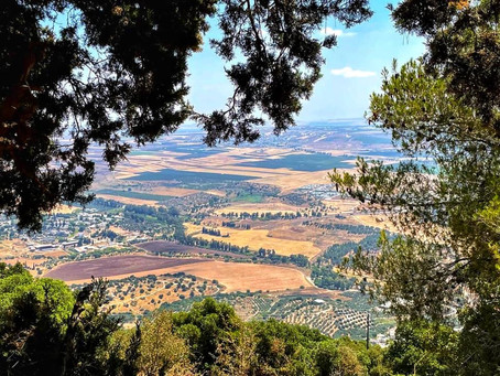A beautiful view of northern Israel taken on a quick trip up north, aka the Tuscany of Israel