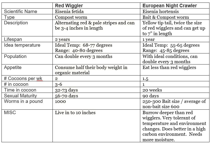 Benefits of Red Wiggler VS European Nightcrawler