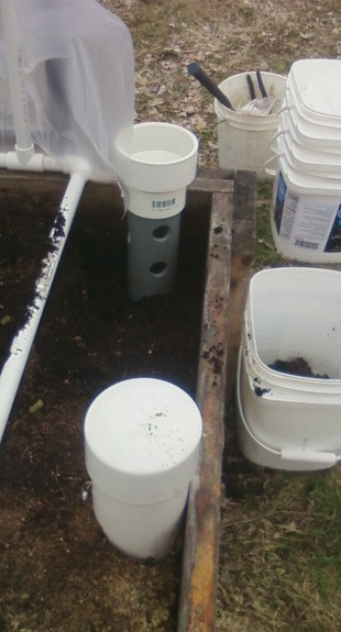 In ground worm farm made from a PVC pipe with holes drilled in it and buried in the ground