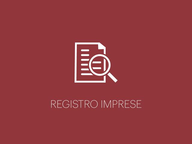 Registro imprese