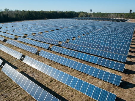 How Solar Farms Affect The Environment