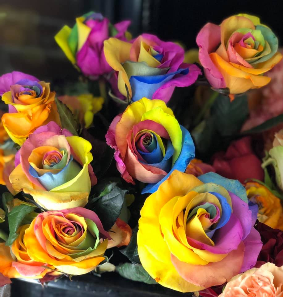 SimplyBlooming_rainbow roses