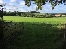 Shepherds Down & Farm